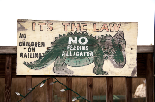 Don't feed the Aligator sign
